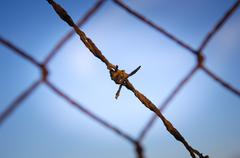 barbed wire close - stock photo