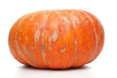 orange pumpkin - stock photo