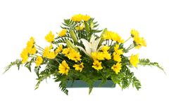 yellow daisy and white flowers arrangement - stock photo