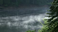 Mist moving over still water in forest Stock Footage