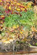Composting heap Stock Photos