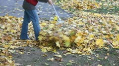 Autumn scene Stock Footage