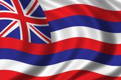 Flag of Hawaii Piirros
