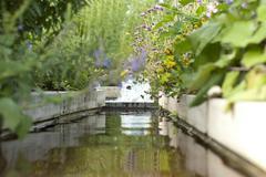 Flowerbed 2 - stock photo