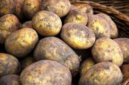 Stock Photo of potatoes