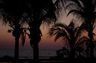 Tropical Sunset or Sunrise 001 Stock Photos