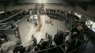 Automated Dairy Farm 5 Stock Footage