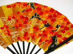 detail of japanese fan - stock photo