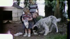 HUNGRY Pet DOG Gets Food From Kids Children 1960s Vintage Film Home Movie 3279 Stock Footage