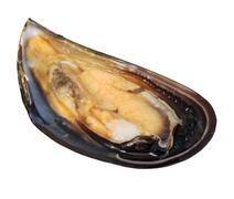 Single raw open mussel cut out Stock Photos