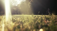 cyclist in summer park - stock footage