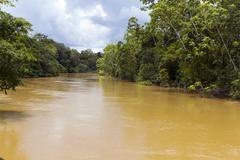rio tiputini in the ecuadorian amazon, the water brown with sediment - stock photo