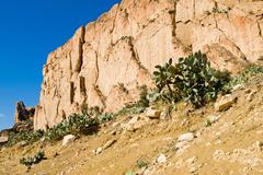 tunisian landscape - stock photo
