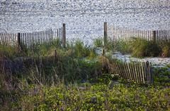Beach sand, sea grass and fences landscape Stock Photos
