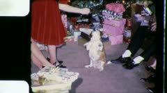 Woman FEEDING CHRISTMAS DOGGIE Dog Pet 1960s Vintage Film Home Movie 3382 - stock footage