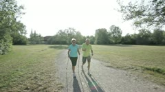 senior nordic walking couple - stock footage