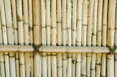 fence made of bamboo - stock photo