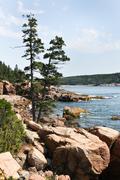 Acadia coast Stock Photos
