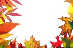 Colorful leaves frame Stock Photos