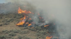 fire, fast advancing brush fire, #6 - stock footage
