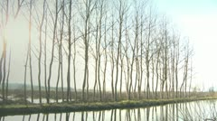 Poplar trees in a row and hut in wet lands Stock Footage