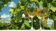 White Grape and Wine Stock Footage