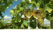 Stock Video Footage of DOLLY: White Grape and Wine