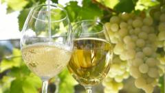 Pouring a Glass of Wine Stock Footage