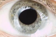 Stock Photo of Blue eye in macro