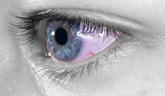 blue eye macro - stock photo