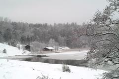 Winter scene near lake Stock Photos