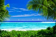 Deserted tropical beach framed by palm trees Stock Photos