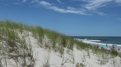 Beach and Dunes: Island Beach, NJ Stock Footage