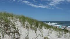 Beach and Dunes: Island Beach, NJ - stock footage