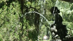 Fountain in the Botanical Gardens Stock Footage