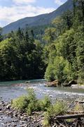 elwha river, olympic national park, washington - stock photo