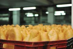 bread factory production - stock photo