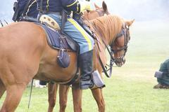 detail, union cavalry sergeant on his horse - stock photo