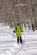 Yellow parka snow shoe hiker, on winter trail with bare aspens, Stock Photos