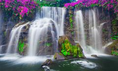 waterfall in hawaii - stock photo