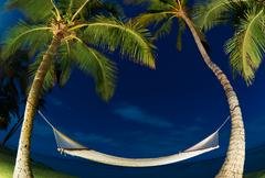 Tropical night, palm trees and hammock Stock Photos
