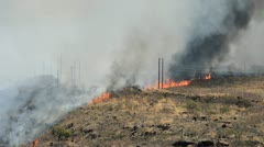 Wildfire - stock footage