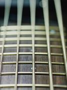 detail of electric bass cords and frets - stock photo