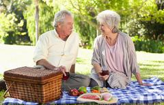 Elderly couple enjoying a picnic in the park - stock photo