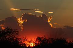 Sunset Backlit Clouds Stock Photos