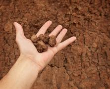Hand with lumps of clay ground Stock Photos