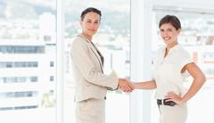 Side view of saleswomen shaking hands - stock photo