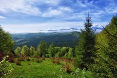 beautiful mountain landscape - carpathians - stock photo