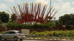 Pohutukawa Flower monument Stock Footage