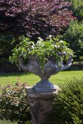 Large stone urn with plants in english garden Stock Photos